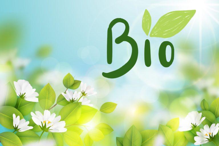 L'intérêt d'utiliser du savon bio et des produits naturels dans le cosmétique